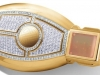 solid-gold-insert-with-300-cut-diamonds-key-for-mercedes-is-ultimate-abundance_2.jpg
