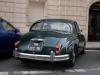 jaguar-francie-11