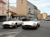 jaguar-francie-14