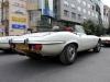 jaguar-francie-17