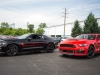 Ford Mustang Roush Warrior T-C Military Edition 082