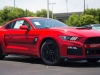 Ford Mustang Roush Warrior T-C Military Edition  085