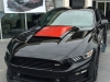 Ford Mustang Roush Warrior T-C Military Edition  088