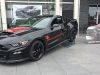 Ford Mustang Roush Warrior T-C Military Edition  090