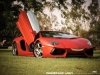 lamborghini-aventador-gets-adv1-wheels-and-elephant-photo-gallery_1