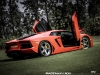 lamborghini-aventador-gets-adv1-wheels-and-elephant-photo-gallery_14