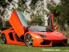 lamborghini-aventador-gets-adv1-wheels-and-elephant-photo-gallery_18