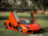 lamborghini-aventador-gets-adv1-wheels-and-elephant-photo-gallery_19