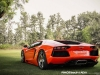 lamborghini-aventador-gets-adv1-wheels-and-elephant-photo-gallery_21