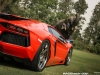 lamborghini-aventador-gets-adv1-wheels-and-elephant-photo-gallery_23