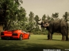 lamborghini-aventador-gets-adv1-wheels-and-elephant-photo-gallery_25