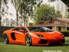 lamborghini-aventador-gets-adv1-wheels-and-elephant-photo-gallery_27