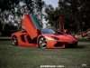 lamborghini-aventador-gets-adv1-wheels-and-elephant-photo-gallery_3