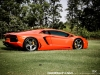 lamborghini-aventador-gets-adv1-wheels-and-elephant-photo-gallery_4
