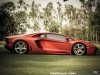 lamborghini-aventador-gets-adv1-wheels-and-elephant-photo-gallery_5