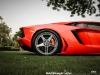 lamborghini-aventador-gets-adv1-wheels-and-elephant-photo-gallery_6