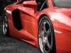 lamborghini-aventador-gets-adv1-wheels-and-elephant-photo-gallery_8