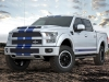 Shelby F150 700  (5)