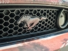 ford-mustang-rust-wrap-11