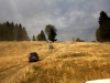 mercedes-benz-transylvania-adventure-2013-38
