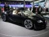 7-frankfurt-2013-bugatti-04
