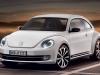 beetle-fender-02