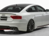 wald-international-whips-the-audi-a5-sportback-into-shape-photo-gallery_3