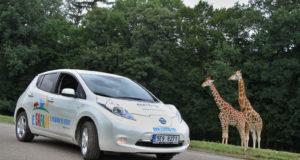 ZOO-Dvur-Kralove-Nissan-Leaf-E-safari
