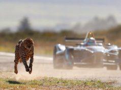 zavod gepard formule e